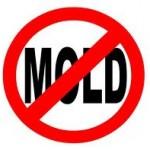 No-Mold